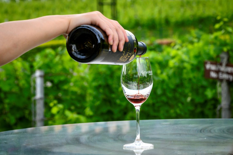 Covid-19 related loss of taste and smell has been devastating for people who make a living from tasting wine