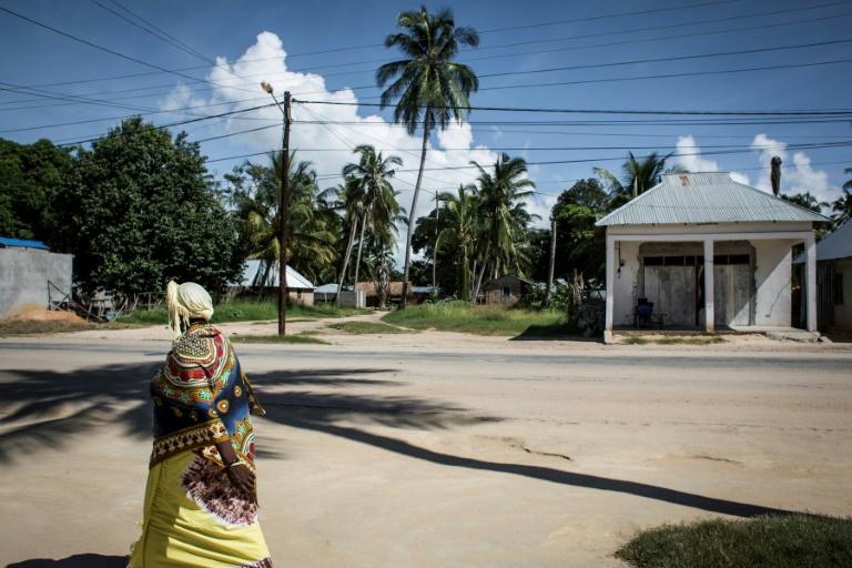 Un femme passe dans une rue de Palma, petit port du nord du Mozambique, le 16 février 2017
