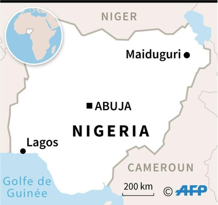 Des forces de sécurité sur les lieux du sabotage d'une ligne électrique par les jihadistes, dans la banlieue de Maiduguri, le 12 février 2021 au Nigeria